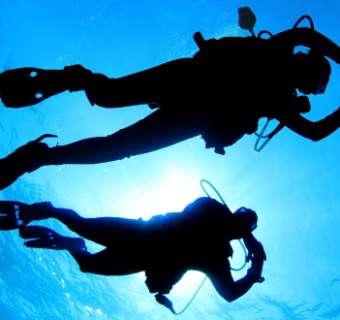 best scuba diving