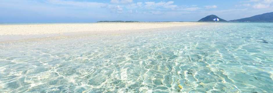 clear-sea