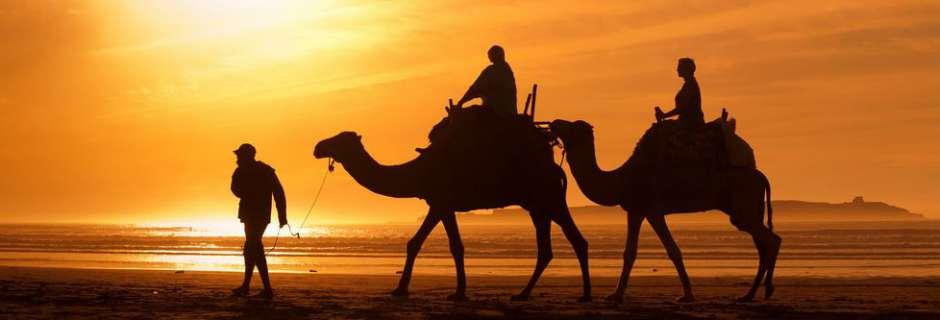 Morocco-blog-cvr