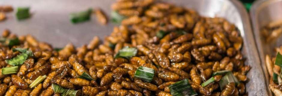 Crispy Caterpillars