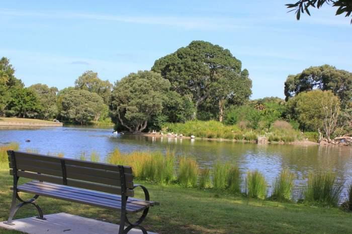 Sydney's Centennial Park