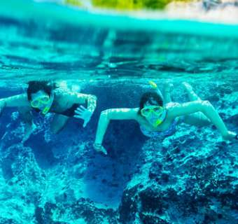 snorkeling cover