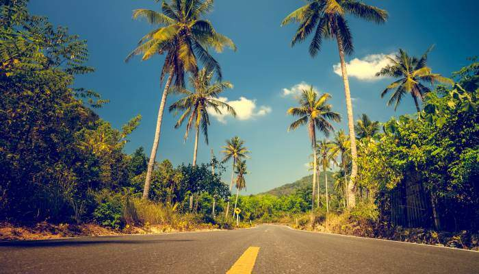 jamaica-road