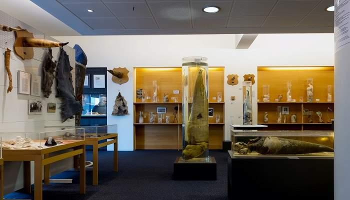 Icelandic Pahallological Museum
