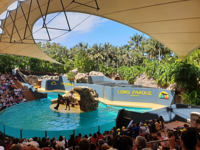 An animal show being performed in Loro Park, Tenerife