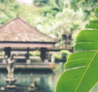 Bali, Indonesia, cottage over water with a leaf obscuring the view