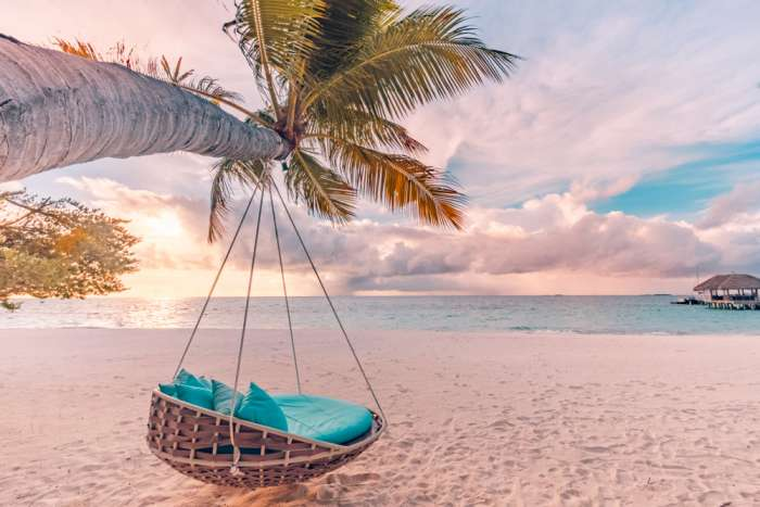 Beach swing suspended from palm tree over sandy beach