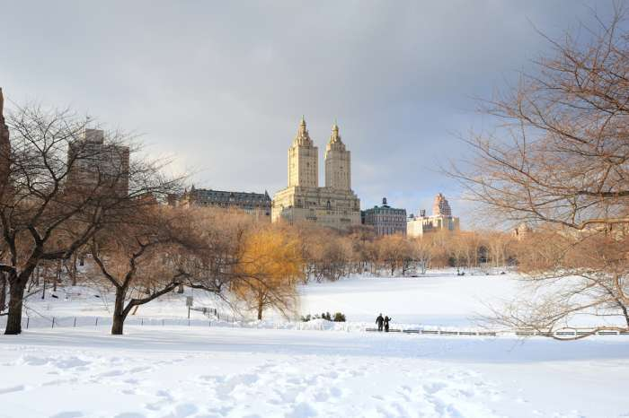 Central Park, New York City, under snow
