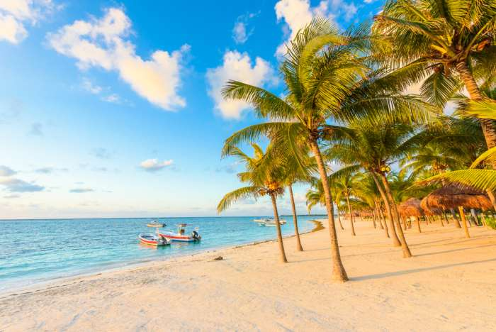 Sandy beach and palm trees at Riviera Maya, Mexico