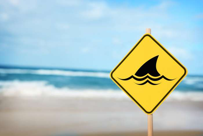 Yellow sign warning of sharks on a beach