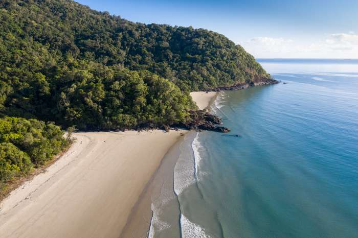 Aerial view of beach section of Daintree Rainforest, where the trees come all the way down to the blue ocean