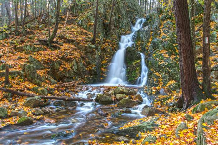 Fitzgerald Falls surrounded by orange autumn leaves on the Appalachian Trail