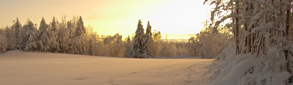 Cheap holidays to lapland compare holidays dealchecker 20182019 solutioingenieria Gallery