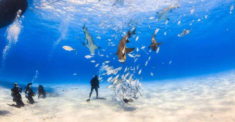 Bahamas - image 2