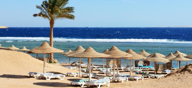 Egypt - image 3