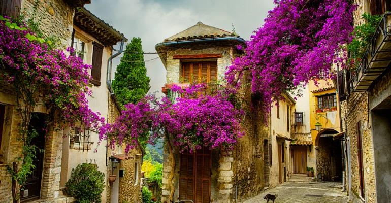 France - image 2